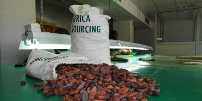africa-sourcing-quality