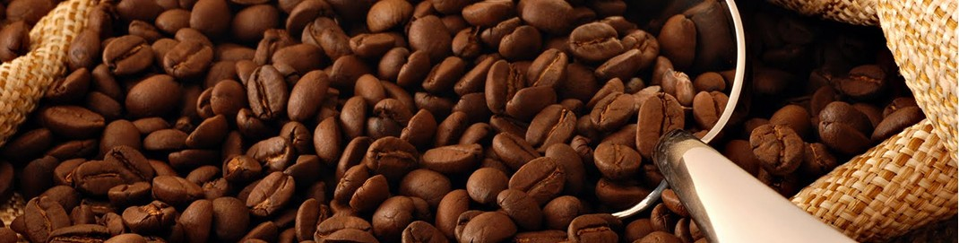 Africa Sourcing Coffee Exporter